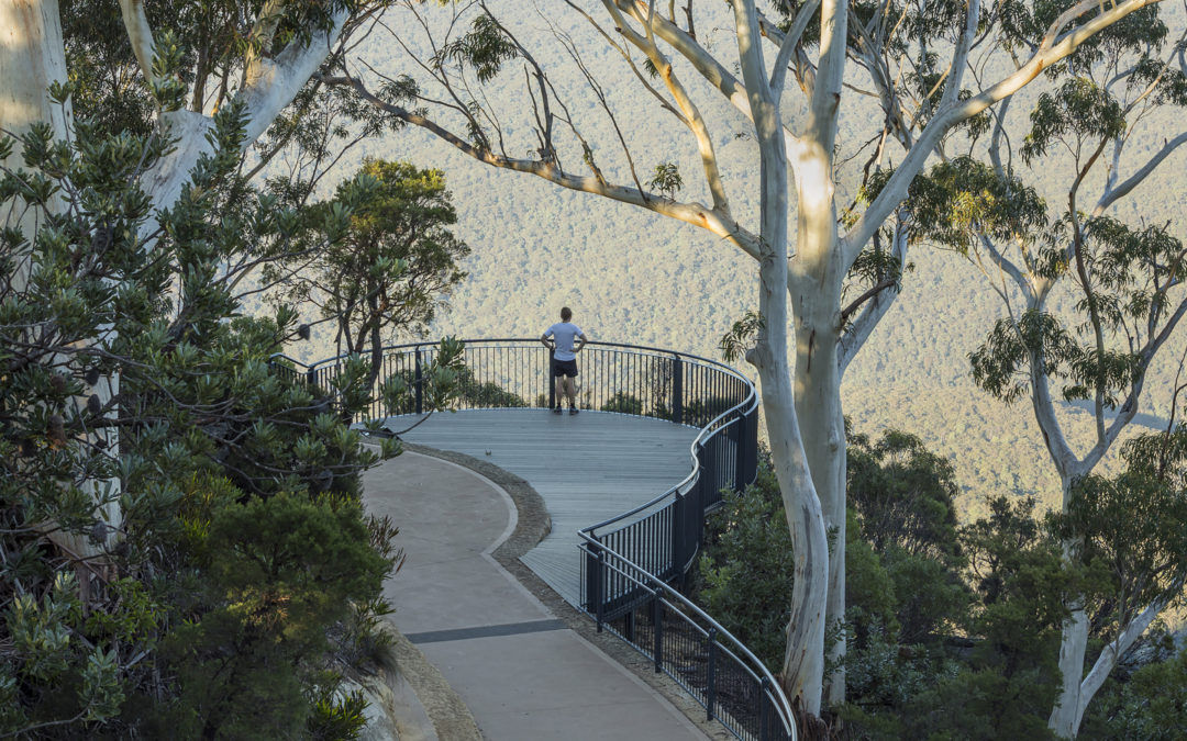 Three Sisters Track wins at the 2017 New South Wales Landscape Architecture Awards