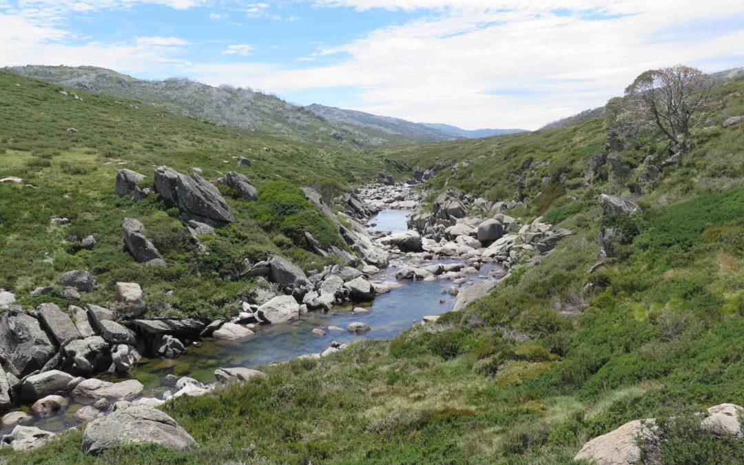 Kosciuszko Snowies Iconic Great Walk receives $17 million investment